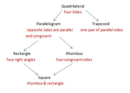 Quadrilaterals mrstynunez quadrilateral flow chart ccuart Image collections